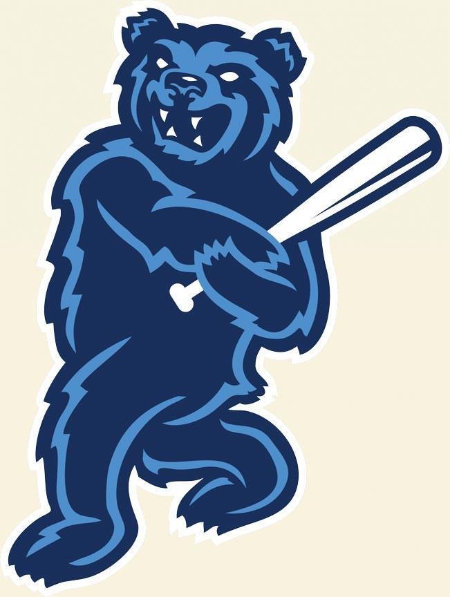 BLUE BEAR WITH BAT ILLUSTRATION